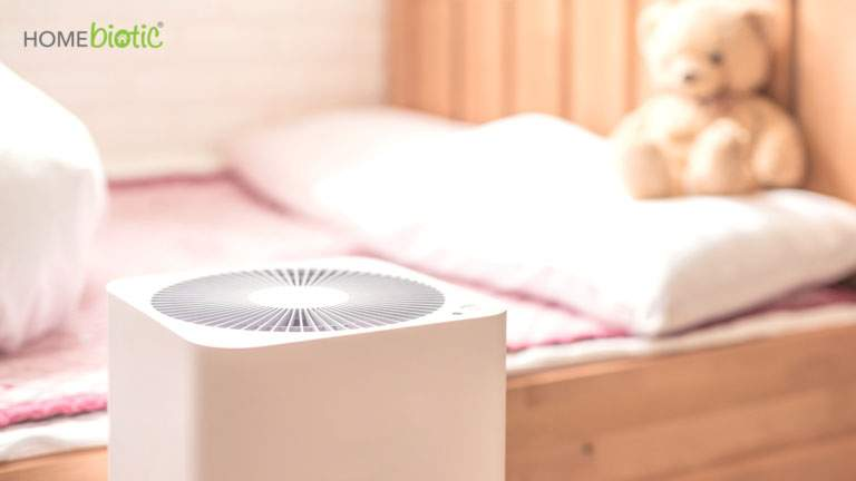 Do Air Purifiers Help with Mold Growth? | Blog