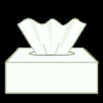 Kleenex Box Icon
